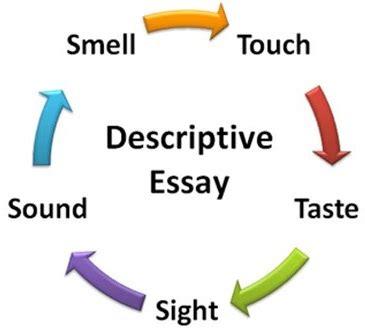 Narrative essay paragraph examples